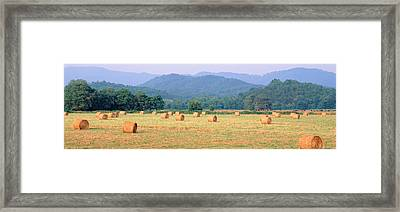Hay Bales In A Field, Murphy, North Framed Print by Panoramic Images