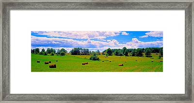 Hay Bales In A Landscape, Michigan, Usa Framed Print by Panoramic Images