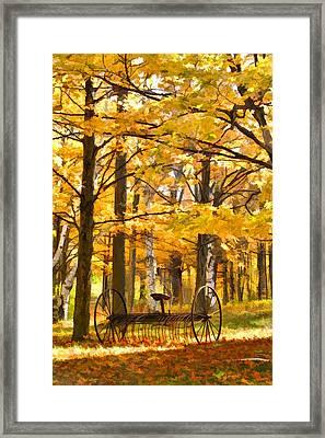 Hay Rake At Rest Framed Print by Christopher Arndt