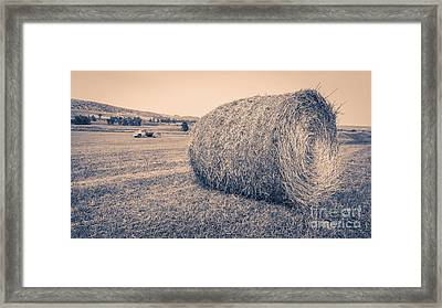 Haying The Field Framed Print by Edward Fielding