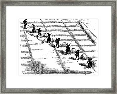 Haymaking Framed Print by Universal History Archive/uig