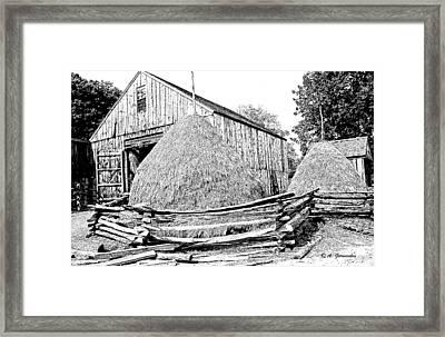 Haystacks And Barn Sturbridge Village Massachusetts Framed Print by A Gurmankin