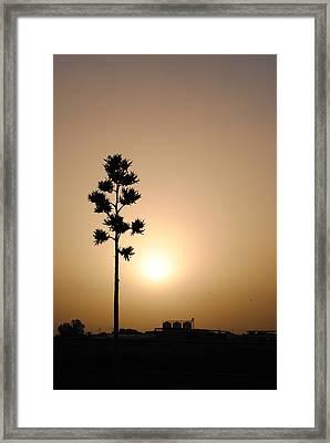 Hazy Daze Of Summer Framed Print by Edward Curtis