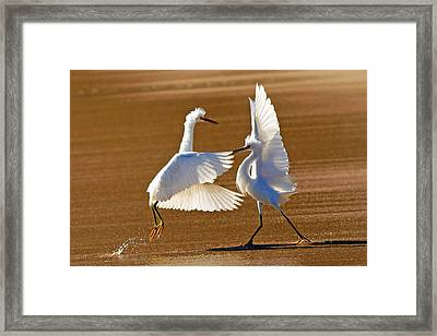He Swept Me Off My Feet  Framed Print by Davids Digits