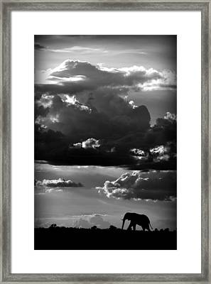 He Walks Under An African Sky Framed Print by Wildphotoart