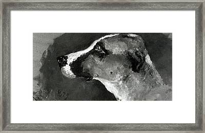 Head Of A Dog With Short Ears Framed Print by Henri de Toulouse-Lautrec
