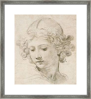 Head Of An Angel Framed Print by Pietro da Cortona