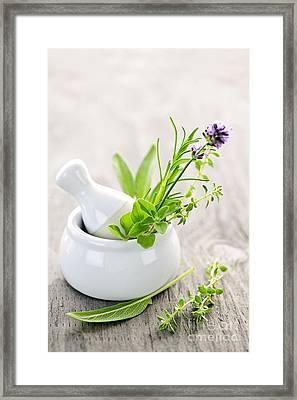 Healing Herbs Framed Print by Elena Elisseeva