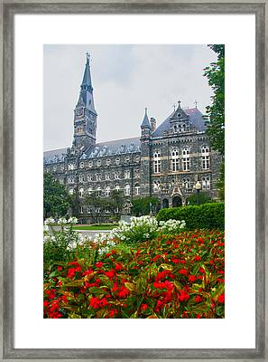 Healy Hall Framed Print by Mitch Cat