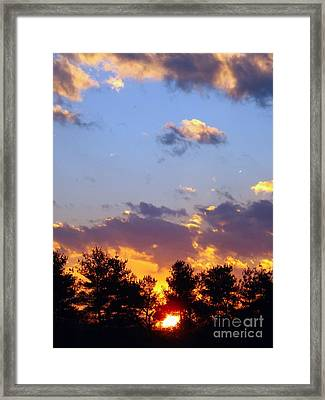 Heart And Soul Framed Print by Robyn King