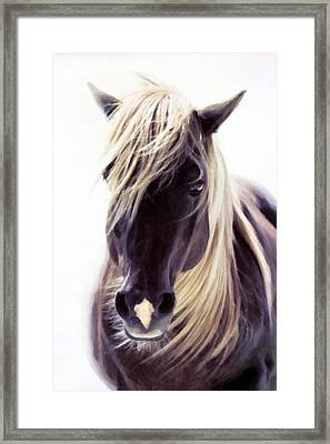 Heart Of A Horse Framed Print by Georgiana Romanovna