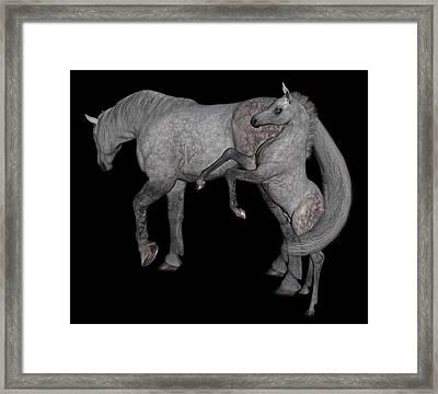 Heart Of The Brood Mare Framed Print by Betsy C Knapp
