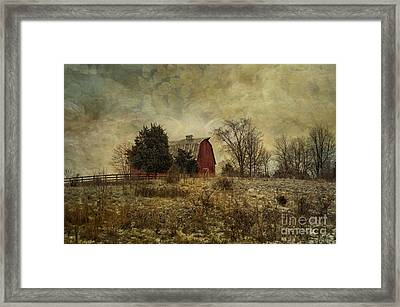 Heart Of The Farm Framed Print by Terry Rowe