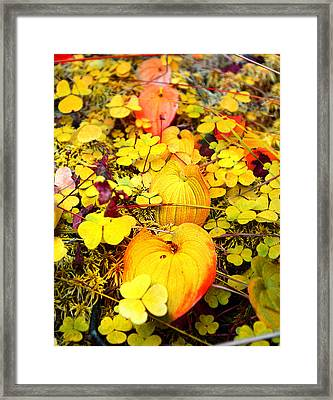 Heart Of The Forest Framed Print by Irina Effa