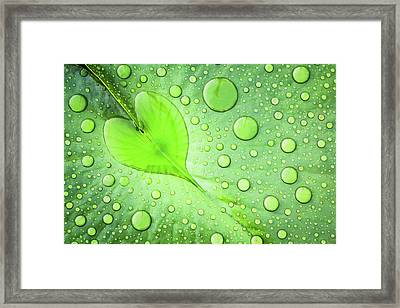 Heart Framed Print by Patrick Foto