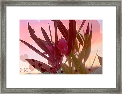 Hearts And Flowers Framed Print by Augusta Stylianou