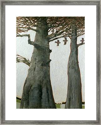 Heartwood Framed Print by Charlie Baird