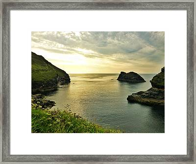 Heavenly Blaze Framed Print by Connie Handscomb