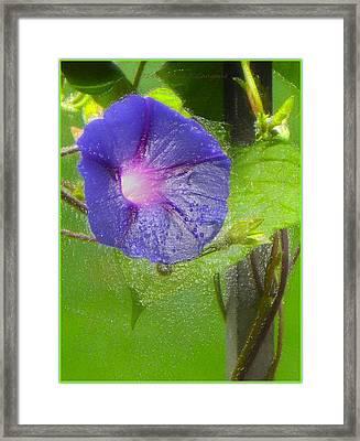 Heavenly Blue Framed Print by Sonali Gangane