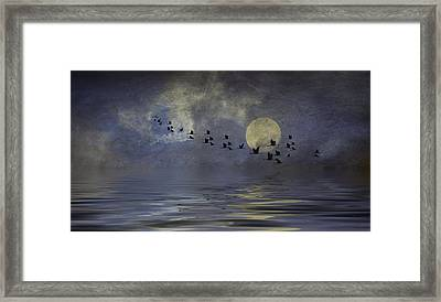 Heavens Gate Framed Print by Diane Schuster