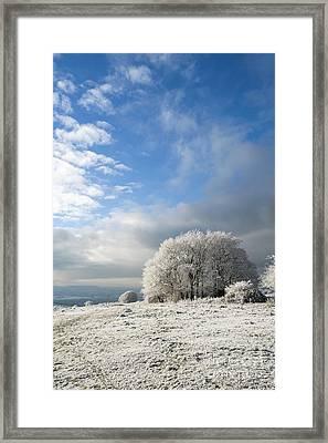 Heavy Frost Framed Print by Anne Gilbert