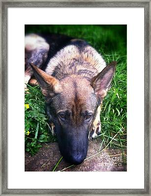 Things To Think About Framed Print by Teresa A Lang