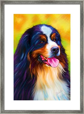 Colorful Bernese Mountain Dog Painting Framed Print by Michelle Wrighton