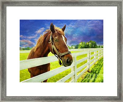 Hello From The Bluegrass State Framed Print by Darren Fisher