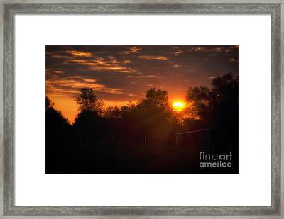 Hello Sunshine Framed Print by Thomas Woolworth
