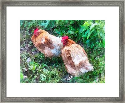 Hen Party Framed Print by Susan Savad