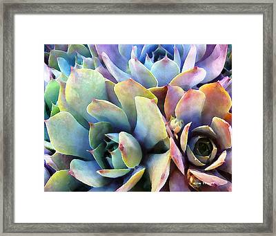 Digital Manipulation Framed Print featuring the painting Hens And Chicks Series - Soft Tints by Moon Stumpp