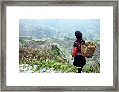 Her Rice Terraces Framed Print by King Wu