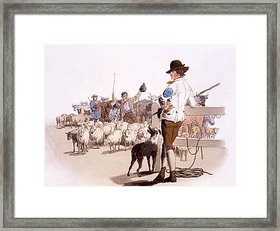 Herdsmen Of Sheep And Cattle, From The Framed Print by William Henry Pyne