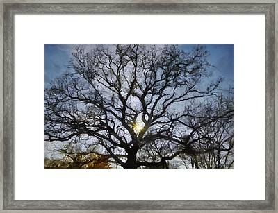 Here Comes The Sun Framed Print by Jeff Kolker