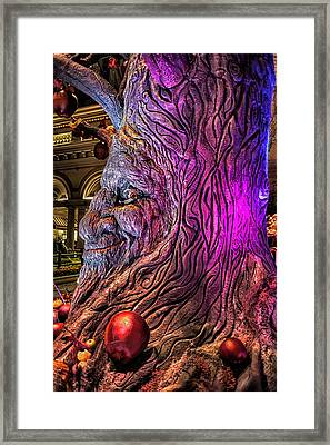 Heres Looking At You Framed Print by Stephen Campbell