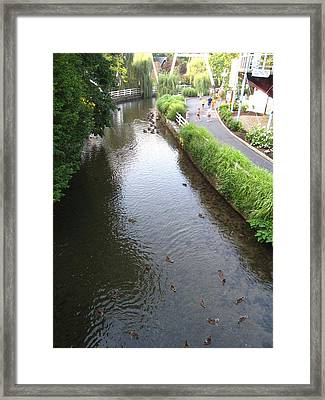 Hershey Park - 121214 Framed Print by DC Photographer