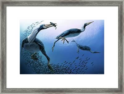Hesperornis Framed Print by Jaime Chirinos