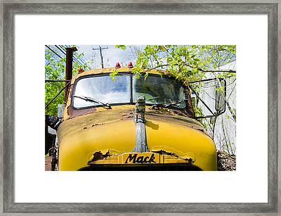 Hey Bulldog - Mack Truck Framed Print by Bill Cannon