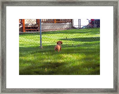 Hey You On The Bike Framed Print by Barb Baker