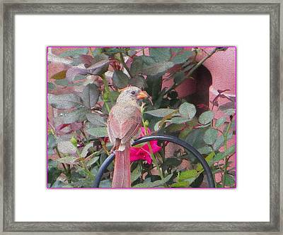 Hiatus Framed Print by Sonali Gangane