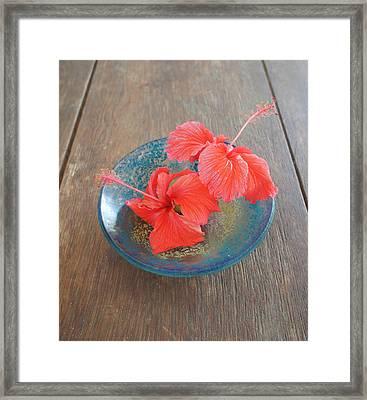 Hibiscus #4 Framed Print by Chikako Hashimoto Lichnowsky