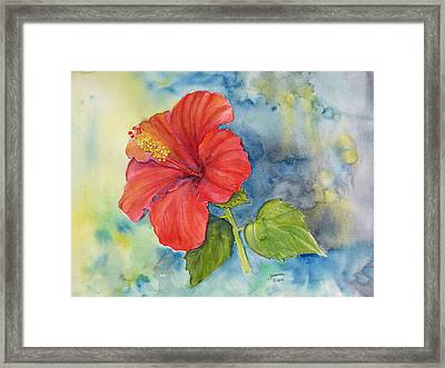 Hibiscus  Framed Print by Janina  Suuronen