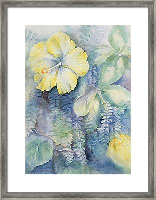Hibiscus, Yellow Framed Print by Karen Armitage