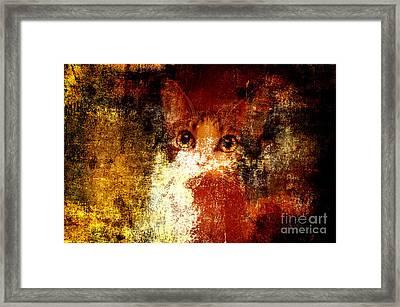Hidden Framed Print by Andee Design