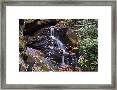 Hidden Falls 2 Framed Print by Chris Flees