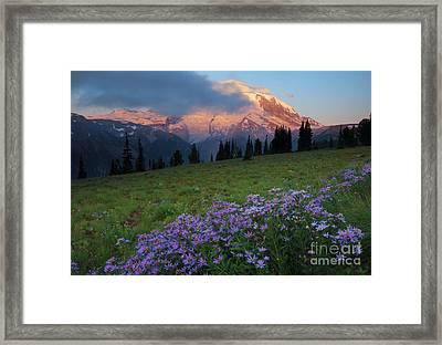Hidden Majesty Framed Print by Mike  Dawson