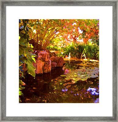 Hidden Pond Framed Print by Amy Vangsgard