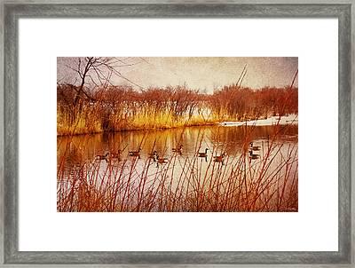 Hidden Sanctuary  Framed Print by Shawna Rowe