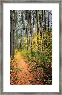 Hidden Valley Framed Print by Bill Wakeley