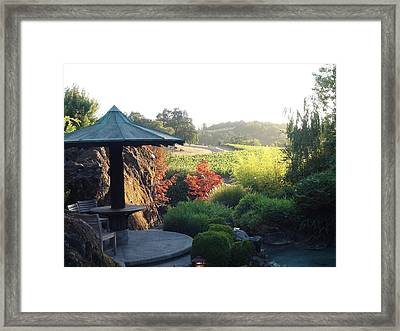 Hide Out  Framed Print by Shawn Marlow